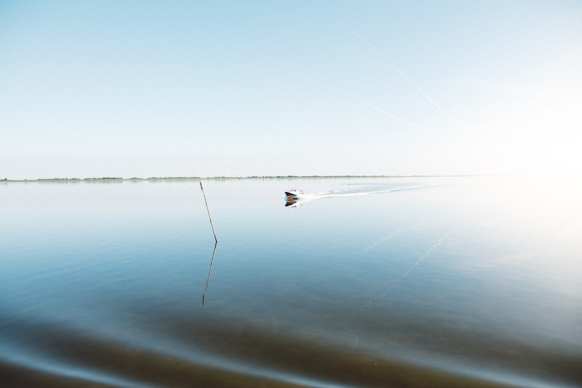 Weinbrandt. | Photographer RANDOM